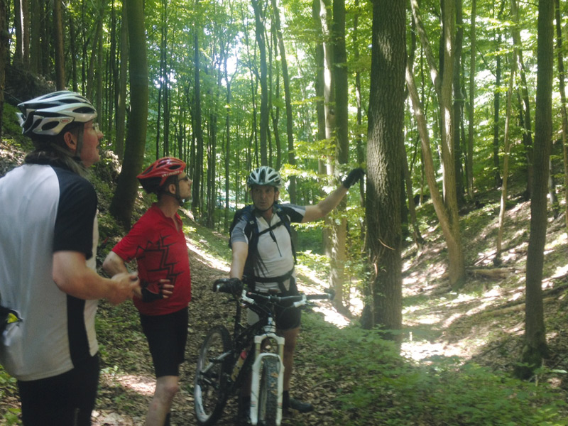Explore Franconia by mountainbike! There are lots of great trails for mountain bikers in the Steigerwald, the Haßberge and the Fränkische Schweiz (Franconian Switzerland) regions.