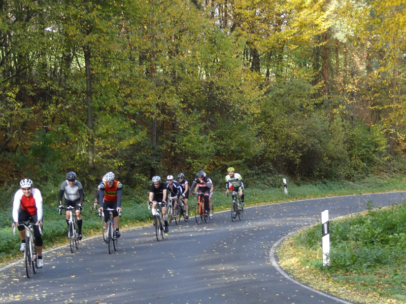 Experts and beginners alike enjoy road bike tours through the Steigerwald forest.
