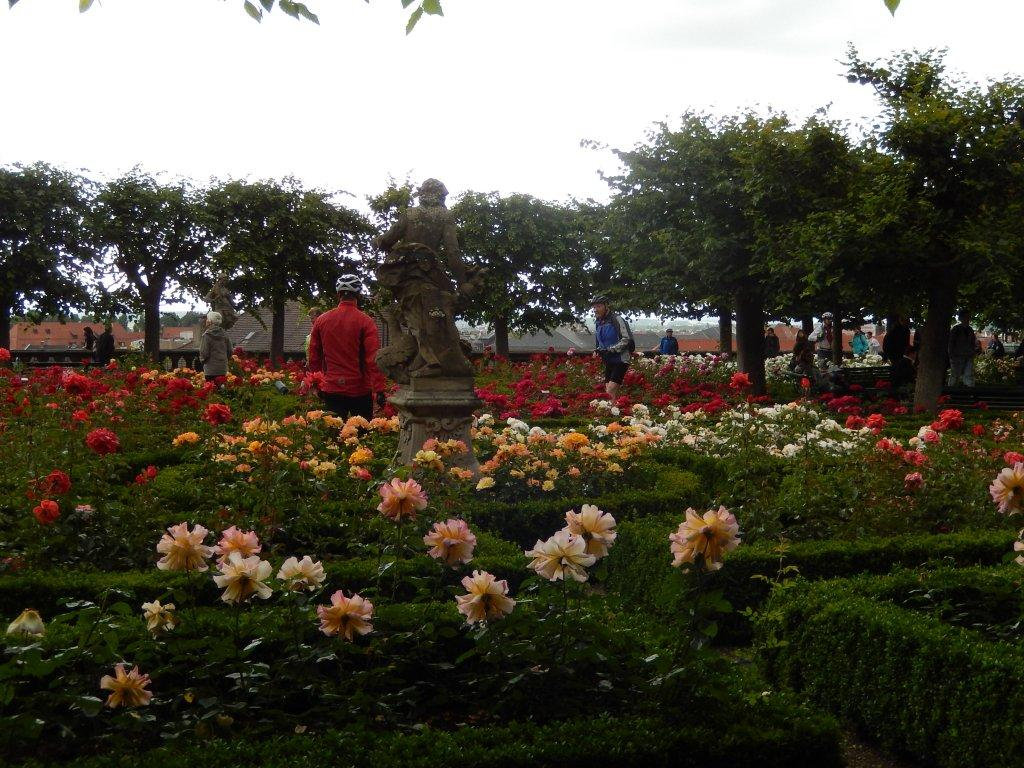 Over seventy varieties of roses are found in the Rose Garden in Bamberg.