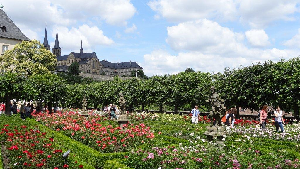 Bamberg's Rose Garden in full bloom in the summer.